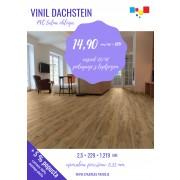 15 Akcijski Vinil Dachstein